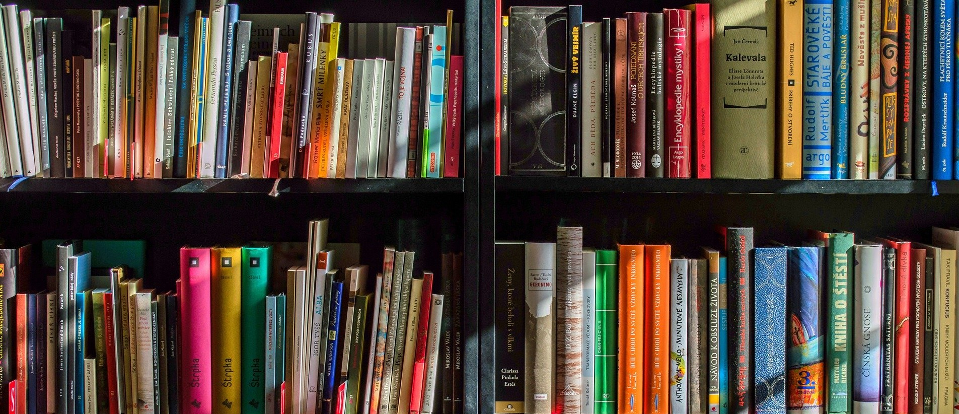 A literature scholar just needs books and isolation!
